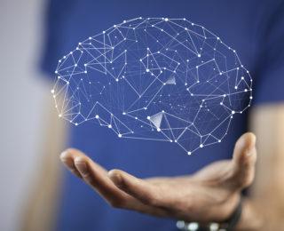 Neurociencias, Revolución Tecnológica y Educación