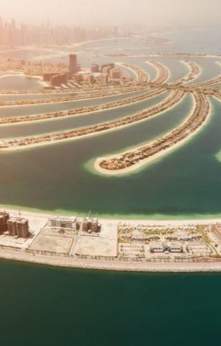Práctica Profesional Expo Dubái